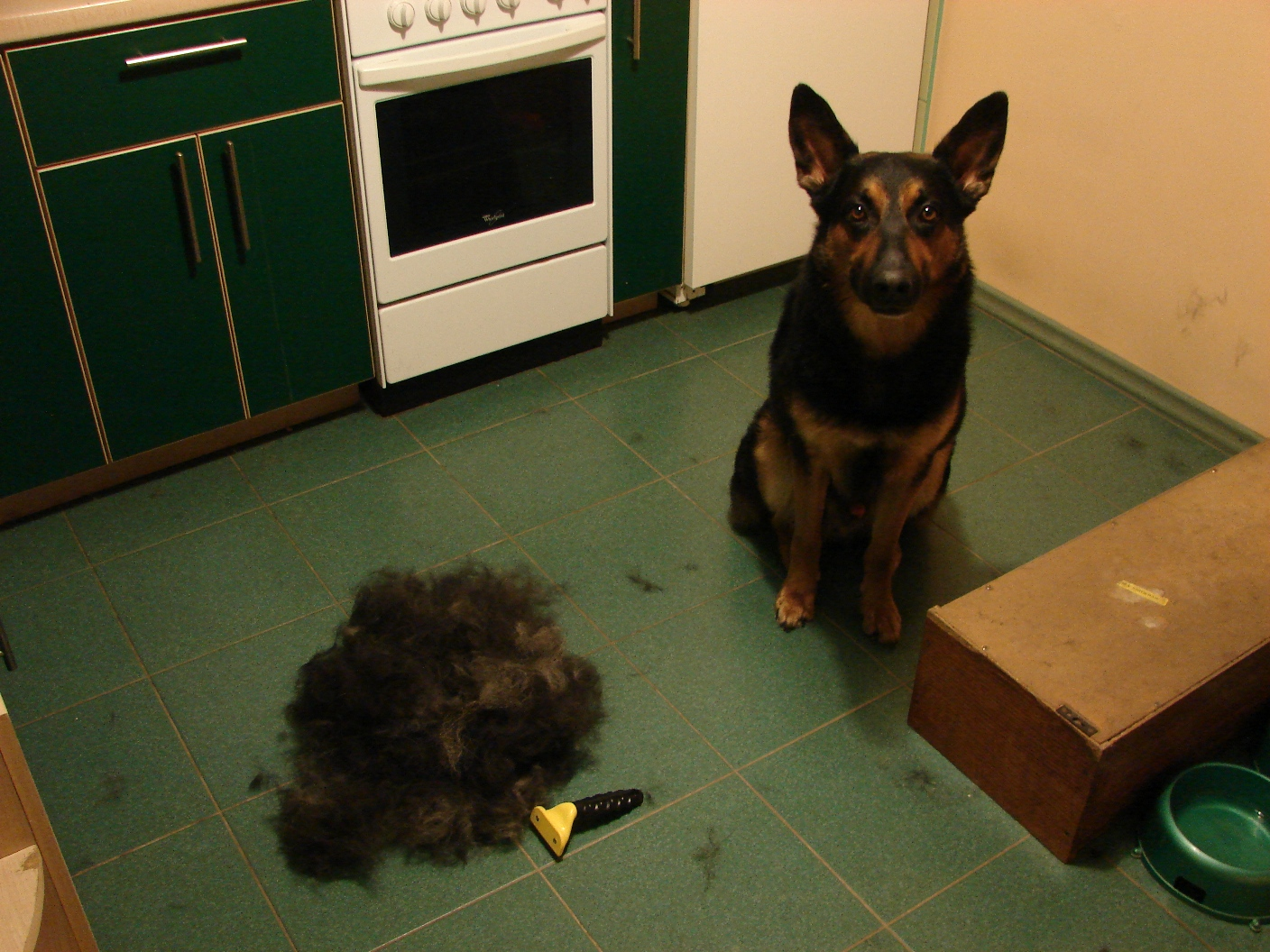 furminator deluxe deshedding tool f r hunde large neu ebay. Black Bedroom Furniture Sets. Home Design Ideas